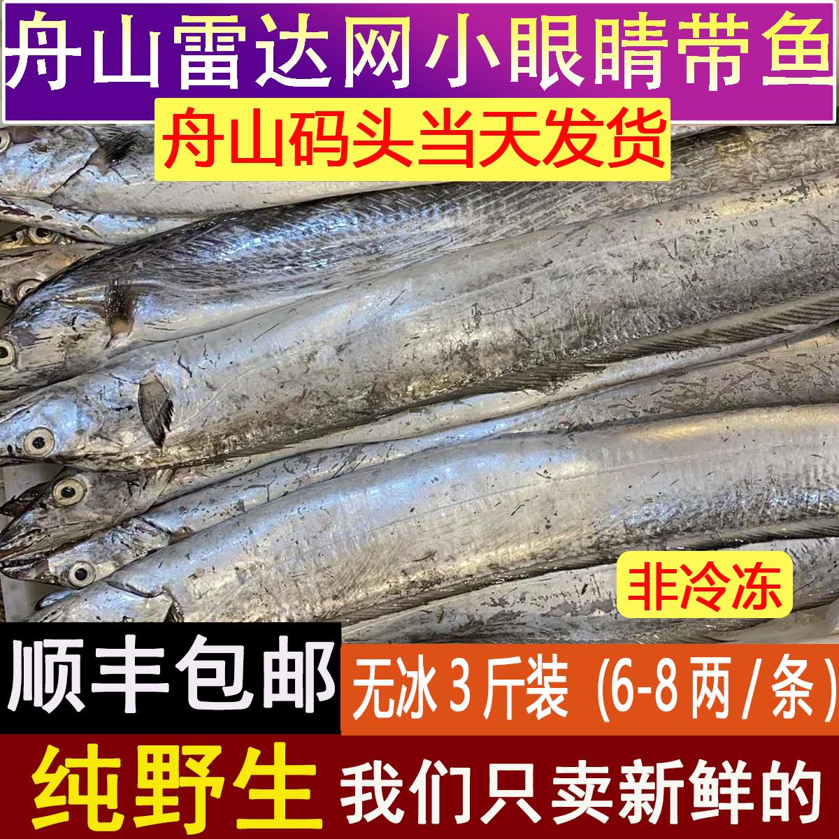 冷凍 太刀魚